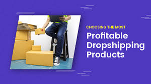 Choose the Most Profitable Product to Market Online